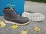 Демисезонные ботинки Clarks Dexy